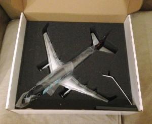 Desempaquetando del avión (4)