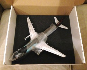Desempaquetando del avión (5)