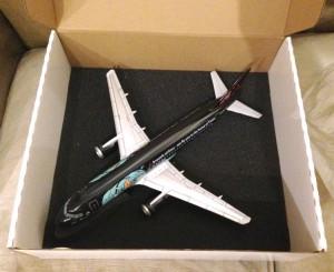 Desempaquetando del avión (6)